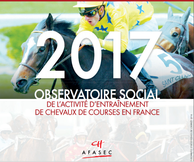 Observatoire social 2017