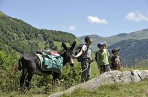 une famille en randonnée avec Névé d'Etsaut, un de nos ânes de rando