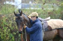 Nicolas Blondeau et Thierry de Pas proposent de débourrer les chevaux mais aussi les cavaliers