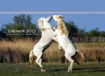 AGENDAS CHEVAUX 2013 / GALERIE PHOTOS CHEVAUX D'EXCEPTION