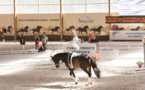 Au coeur de la Voltige Equestre en compétition