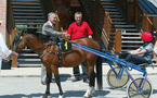 LANCEMENT OFFICIEL DUNE NOUVELLE DISCIPLINE :  LES COURSES DE PONEY AU TROT ATTELE